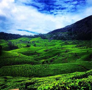 Five beautiful days in heaven Kerala