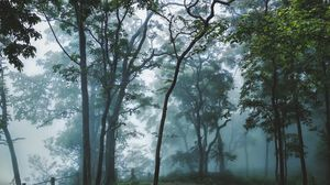 Misty monsoons of India