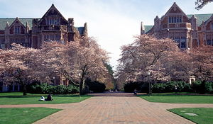 University of Washington 1/1 by Tripoto