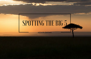 SPOTTING THE BIG 5 IN KENYA
