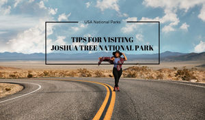 TIPS FOR VISITING JOSHUA TREE NATIONAL PARK