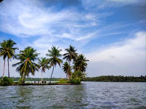 Why God's Own Country (Kerala) was on my bucket list and should be on yours too!