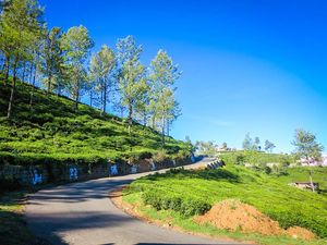 Why Do Ooty, When You Can Do Kotagiri?