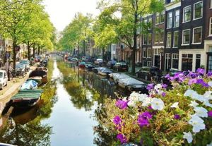Gourmet and Shopping Journey in Amsterdam