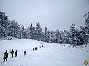 Kedarkantha - A blizzardous adventure