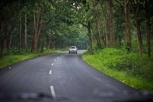 Trip to Wayanad
