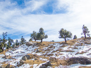 Nag Tibba- an unfinished Trail