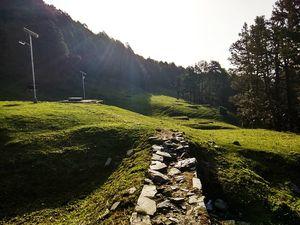 Beautiful paths sunshine????