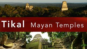 The Mayan Temples of TIKAL