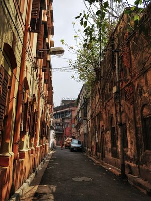 Calcutta : A Walk to Remember