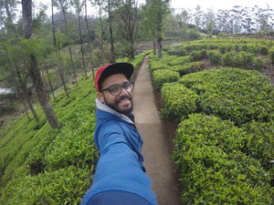 Fresh from the Tea Farms of Ooty. #SelfieWithAView #TripotoCommunity