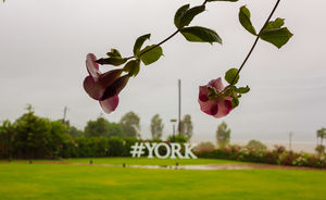 York Winery & Tasting Room 1/undefined by Tripoto