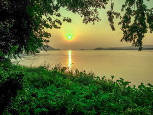 From the Banks of the Mighty Brahmaputra...