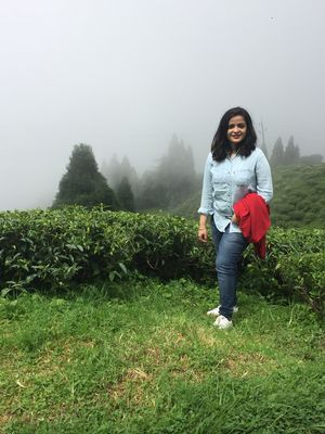 Happy Valley Tea Garden 1/undefined by Tripoto