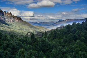 Blue Mountains National Park NSW 1/undefined by Tripoto