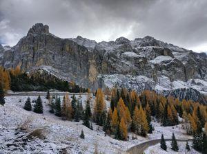 An Italian Fall