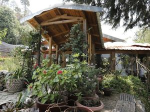 Mistletoe Estate - Property With A Chalet Near Ranikhet