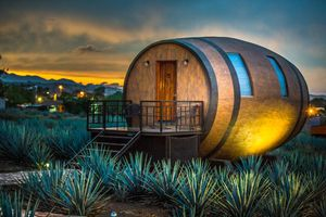Live out All Your Tequila-Infused Dreams in This Mexico Hotel
