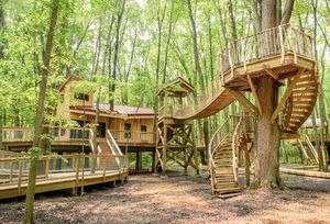 Soon, You Will Be Able to Sleep Amid Trees in Ohio Treehouse Village