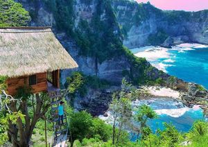 Thinking Bali? These treehouses under ₹3000 will light up your IG feed!