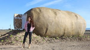 A 6 ton potato prop has been officially recycled as an Airbnb
