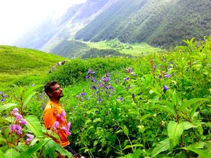 Valley of Flowers and Deoriatal Trek