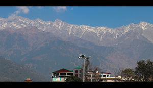 UNEXPLORED HIMACHAL PRADESH - PALAMPUR