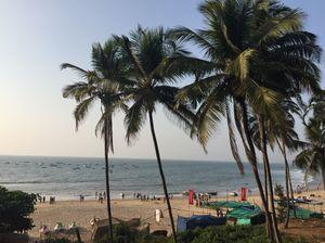 Goa in January
