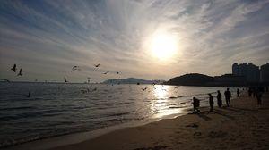 Haeundae Beach 1/undefined by Tripoto