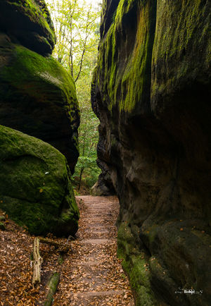 Craving A Wild European Adventure? This Cave Camping Experience Is Just For You