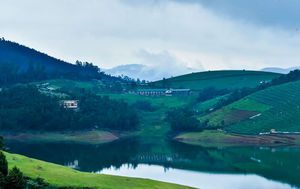 This Pet-Friendly Farmstay Near Ooty is Straight Out Of The Lord of The Rings