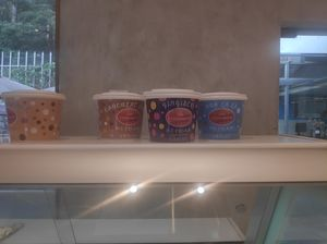 Best Places for Ice-creams in Ooty.