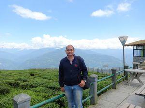 Temi Tea Garden 1/undefined by Tripoto