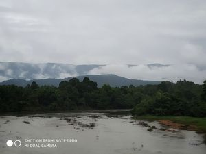 Agumbe: Monsoon in the lap of clouds
