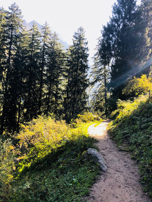 Kheerganga Trek - The most exotic place in Himachal Pradesh