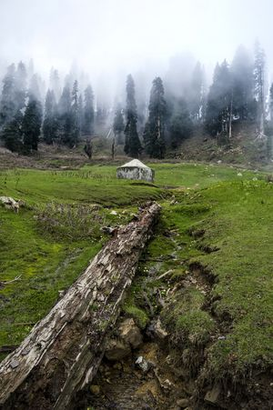 Winter is Coming! #BestTravelPictures #Kashmir