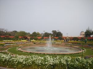 Dream came true: Mughal garden of rastrapati Bhawan