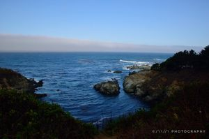 17-Mile Drive 1/undefined by Tripoto