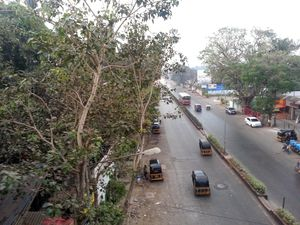 SV Road 1/undefined by Tripoto