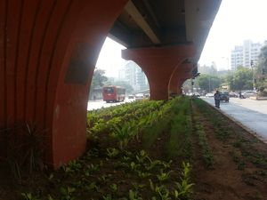 Dr E Moses Marg 1/undefined by Tripoto