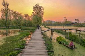 Dal Lake,Kashmir❤️