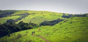 Beating the monotony - Kodachadri trek