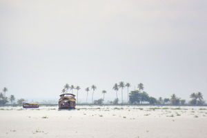 BACKWATERS OF ALLEPPEY - A CRUISE