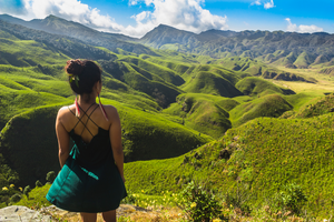 Heavenly Dzükou Valley: The Complete Guide To Visiting Nagaland's Hidden Paradise