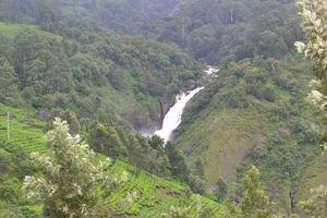 The never before experince, Unseen Munnar's beauty. Its heaven