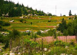 Kinnaur Valley: Sarahan - Sangla - Chitkool - Kalpa