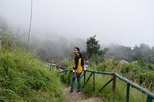 Offbeat holiday in Pangot, near Nainital