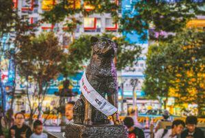 Tokyo in a day #TripWithTripoto