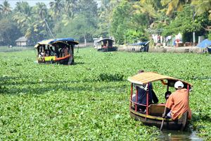 Alleppey - life on Backwaters