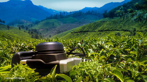 Want to avoid the weekend rush in Munnar? Here is your unheard quaint little escape.